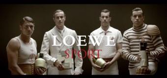 Loewe Pour Homme Sport woda toaletowa