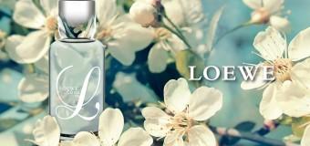 Loewe L Cool woda toaletowa