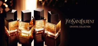 Yves Saint Laurent Splendid Wood  woda perfumowana